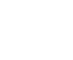 Manhattan Flight Club